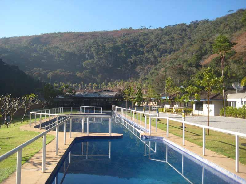 piscina e palmeiras